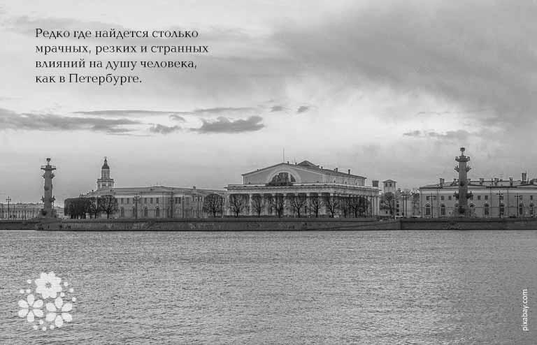 Цитаты о Петербурге