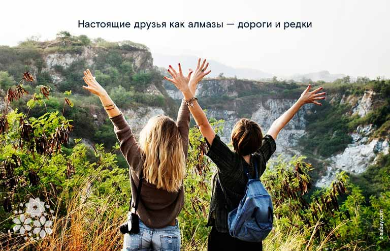 Цитаты, афоризмы про дружбу и друзей до слёз