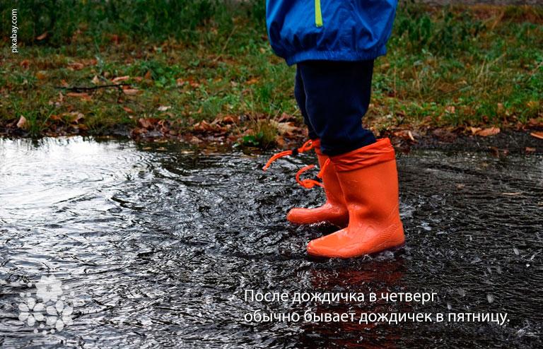 Статусы про дождь и любовь