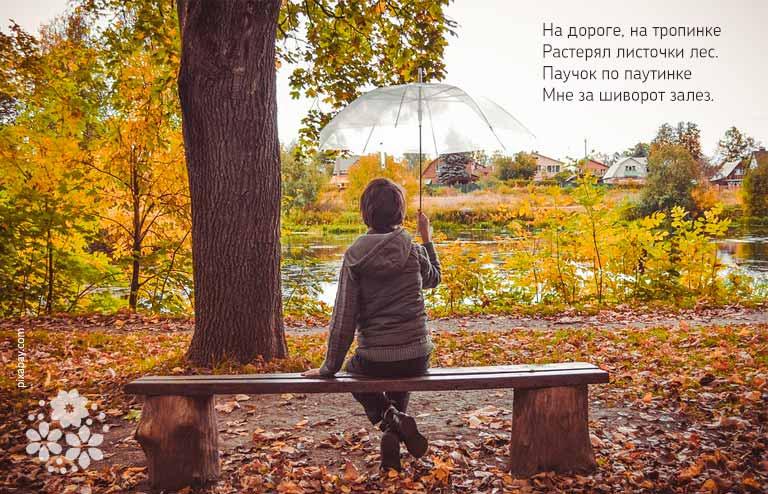 Стихи про осень на конкурс чтецов для 2-3 класса