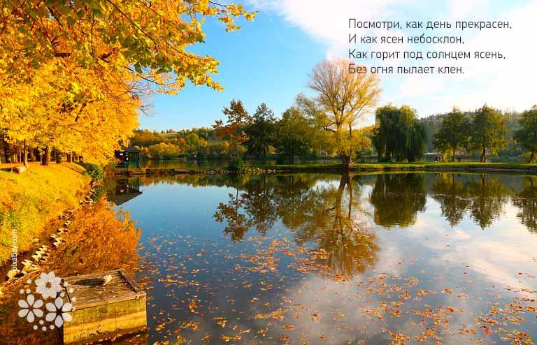 Стихи про осень на конкурс чтецов для 4-5 классов