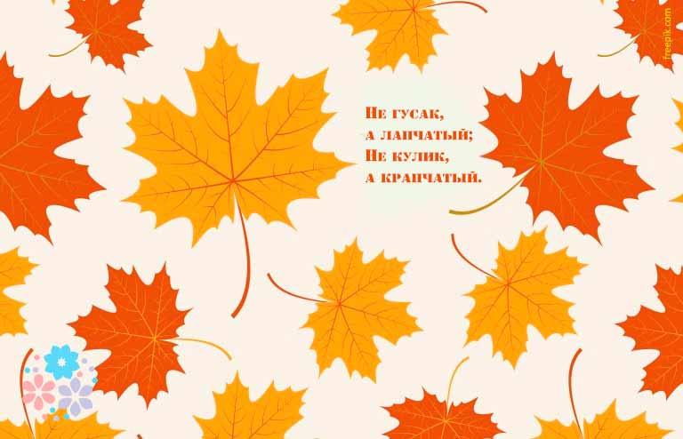 Загадки про листья деревьев для детей 1-2-3 класса