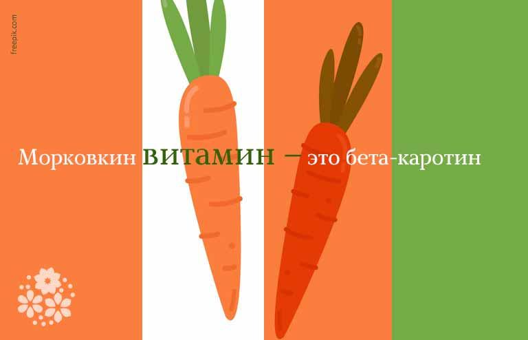 Стихи про морковь для детей